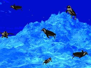 3D Swimming Penguins screenshot