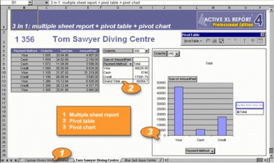 Active XL Report 4.5 screenshot