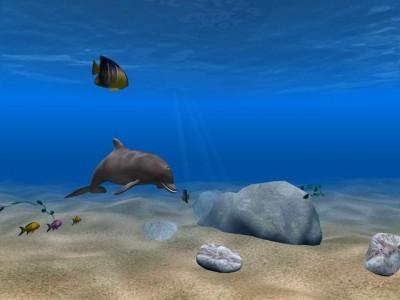 Dolphin Aqua Life 3D Scrensaver 2.9.1 screenshot