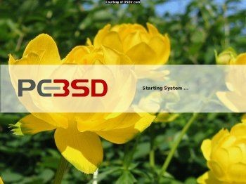 PC-BSD 1.4.1 Final screenshot