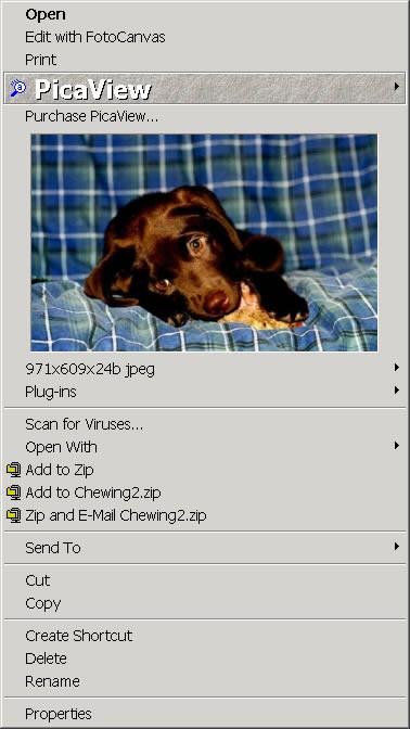 PicaView 2.0 screenshot
