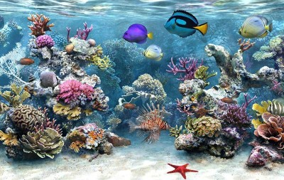 Sim Aquarium Free Tank 2.51 screenshot