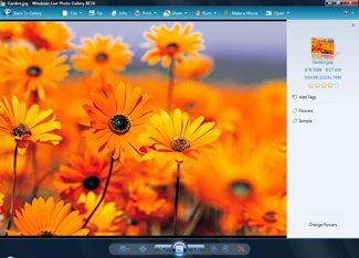 Windows Live Photo Gallery 2008 RU 12.0.1308.1023 screenshot