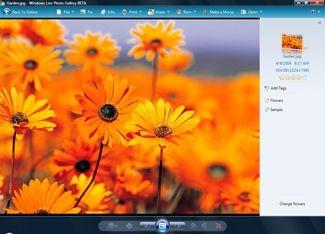 Windows Live Photo Gallery 2008 RU 12.0.1308.1023 screenshot