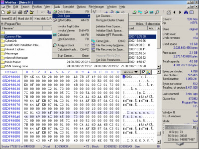 Winhex 19.8 screenshot